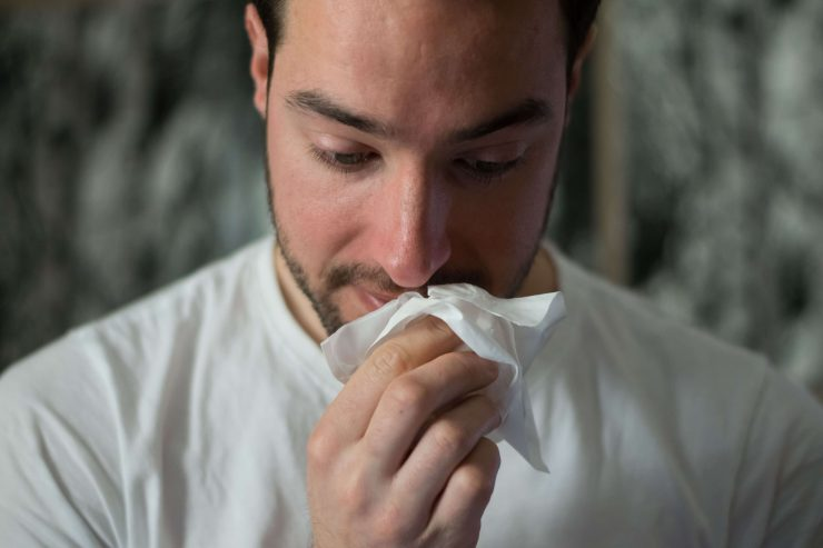 Pollenallergie löst Schnupfen aus